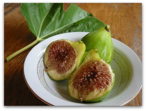 homegrown ripe dessert king figs