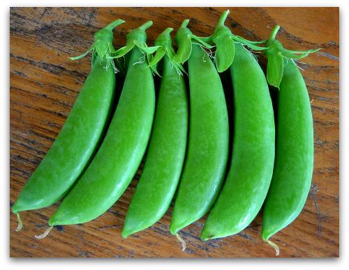 sugar snap peas fesh and delicious