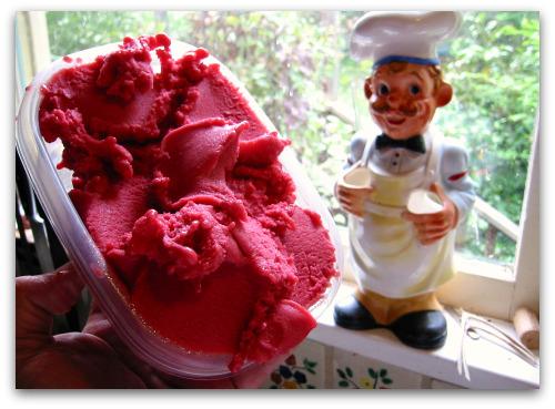homemade raspberry sherbet
