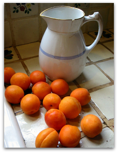 fresh apricots ready for jam