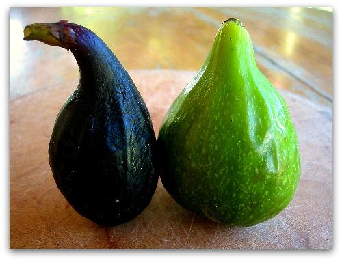 Violette du Bordeaux (Negronne) Fig and Green Fig Dessert King