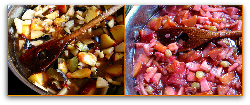 recipe for making fruit chutney