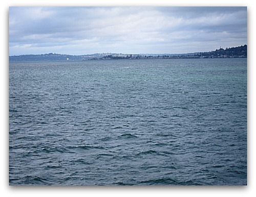 Where's the Orca?