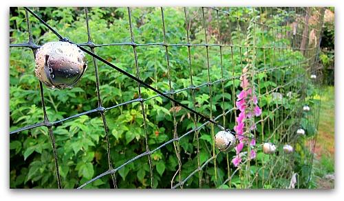 deer bells on fence