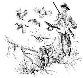 Cherokee Plantation will host the 2012 Tall Timbers Field