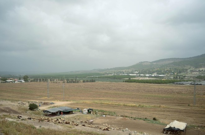 Looking out over the Sorek Valley where the Israelites would have watched the ark of the covenant return to Beth Shemesh on a cow-pulled cart from the land of the Philistines (1 Samuel 6).