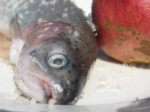 מכינים את הדג