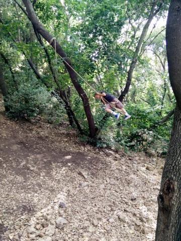 קמפינג ביער הפיות