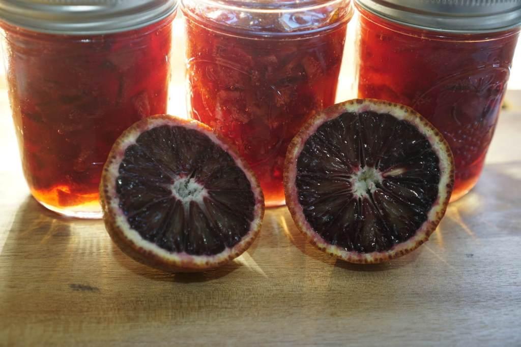 ריבת תפוזי דם