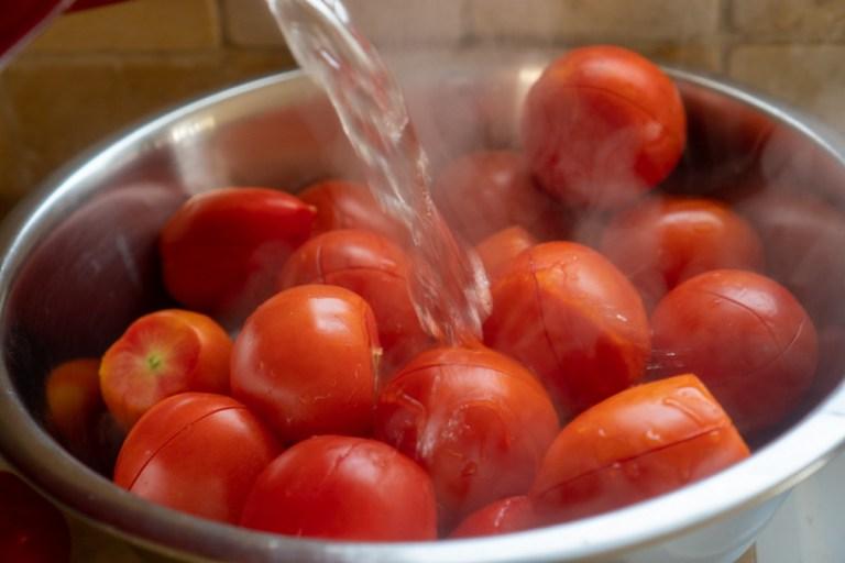 חליטת העגבניות