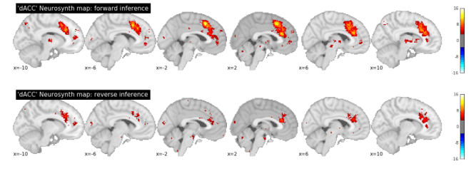 Meta-analysis of 'dACC' in Neurosynth: forward and reverse inference. Maps are thresholded at p < .001.