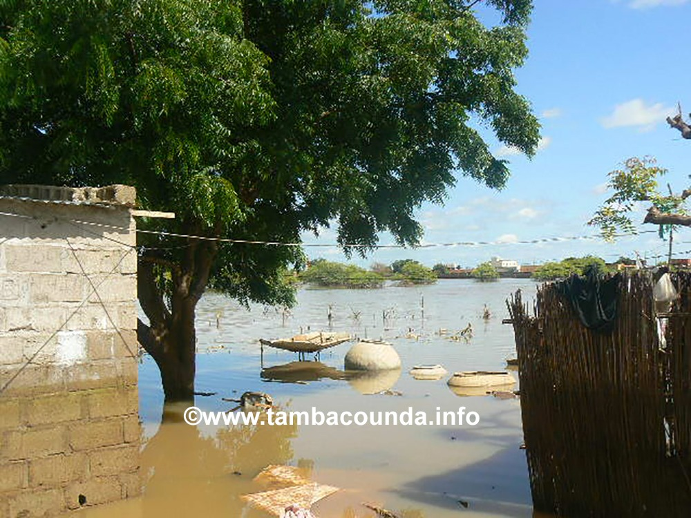 Kidira: Les quartiers Alahina et Pont de Kidira toujours dans les eaux de la Falémé.