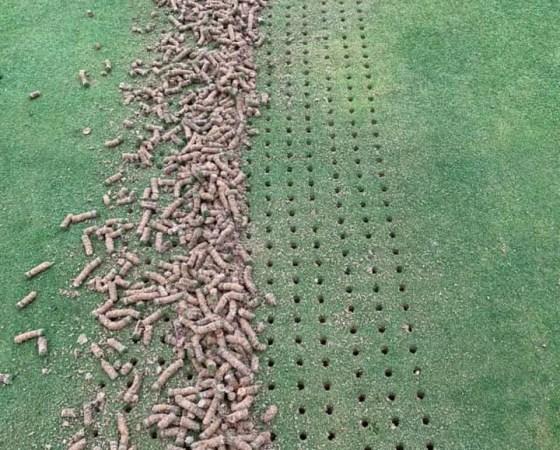 Mantenimiento Tambre Golf 2020
