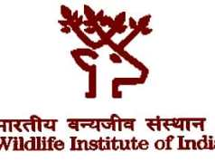 wildlife-institute-india-recruitment-2017