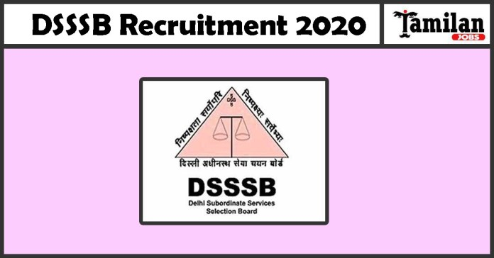 DSSSB Recruitment 2020 Out – 3359 PGT Jobs