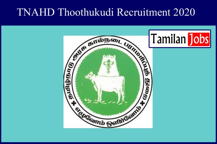 TNAHD Thoothukudi Recruitment 2020 Out – Office Assistant Jobs
