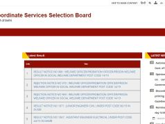DSSSB Statistical Assistant Result 2020