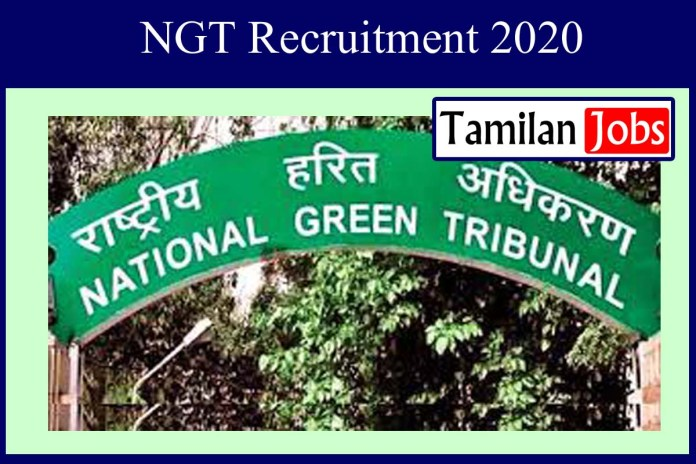 NGT Recruitment 2020 Out – Degree Candidates Apply For Office Assistant Jobs