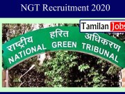 NGT Recruitment 2020