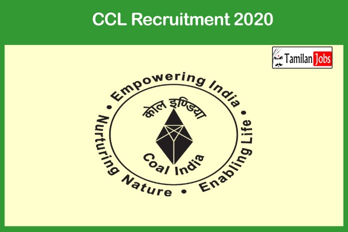 CCL Recruitment 2020 Out – Apply Online 75 Junior Overman Jobs