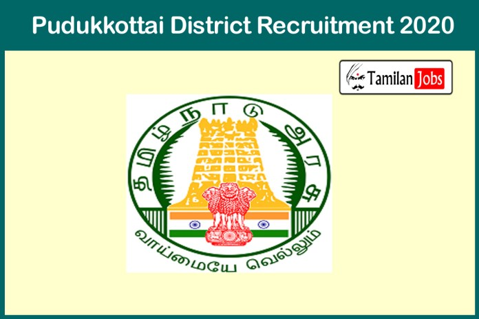 Pudukkottai District Cook Recruitment 2020 Out – Apply 817 Cook Assistant, Meal Organiser Jobs