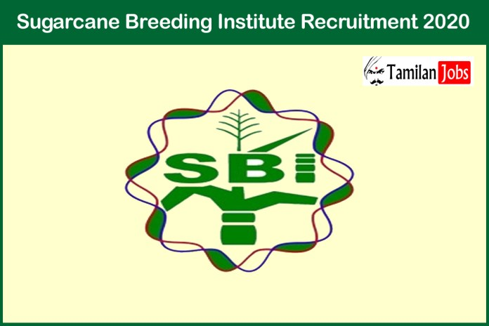 Sugarcane Breeding Institute Recruitment 2020 Out – Apply JRF Jobs