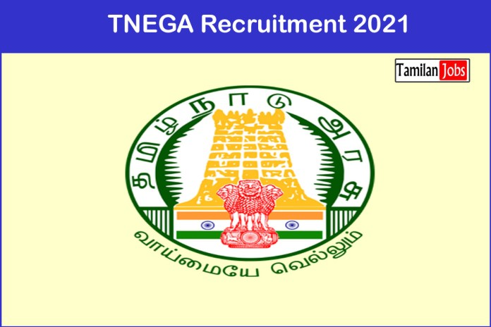 TNEGA  Recruitment 2021 Out – Apply Online 37 Data Scientist and Various  Jobs