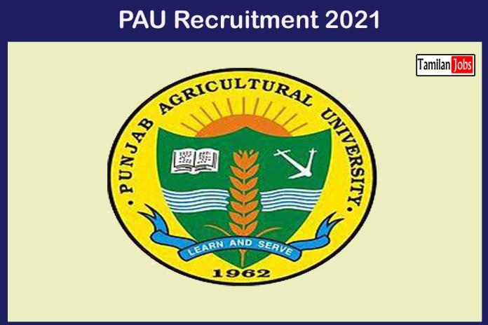PAU Recruitment 2021 Out – Apply Online Various Helper, Lab Helper Jobs