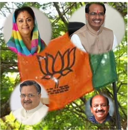 BJP_2013_4_0_vicotry