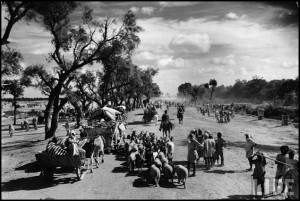 Sikhs migrating to Punjab after the division of India_October 1947_thumb[4]