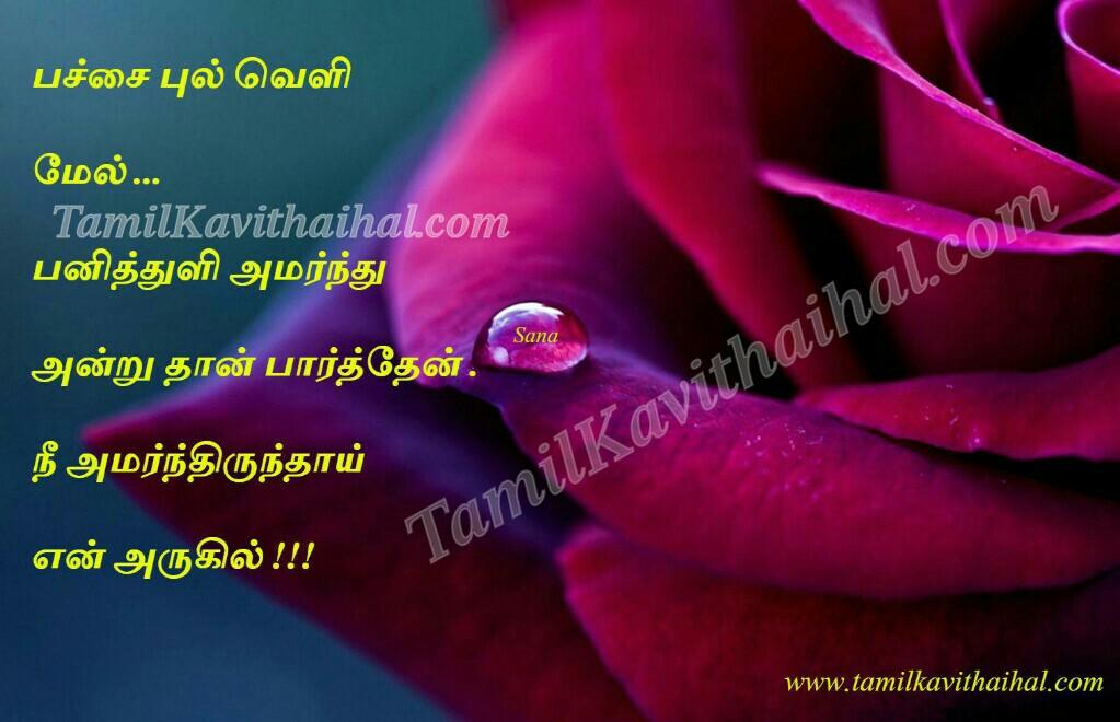 Heart Touching Tamil Kadhal Kavithai Pulveli Panithuli
