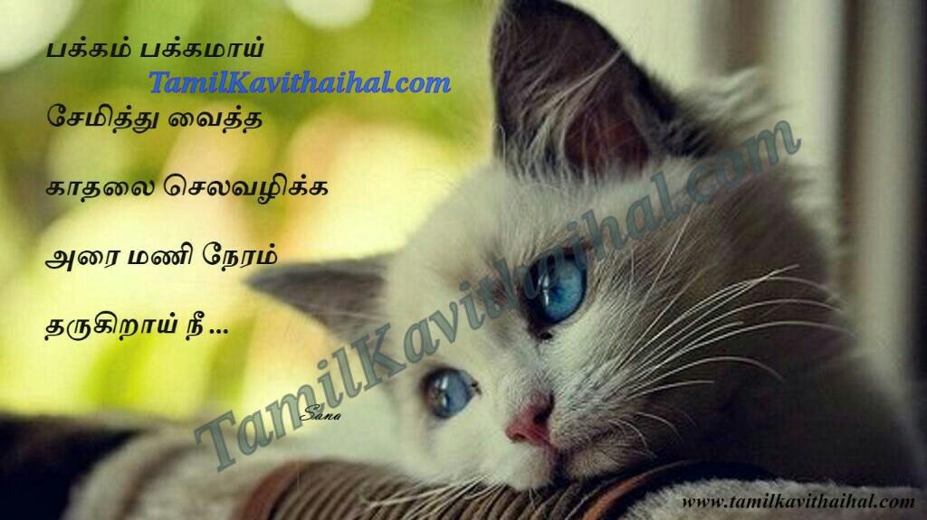 Cute Love Wallpaper For Whatsapp Dp Kadhal Tholvi Tamil Kavithai Pirivu Sogam Thanimai Time