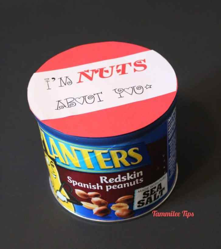 Im nuts About You Valentine - Tammilee TIps