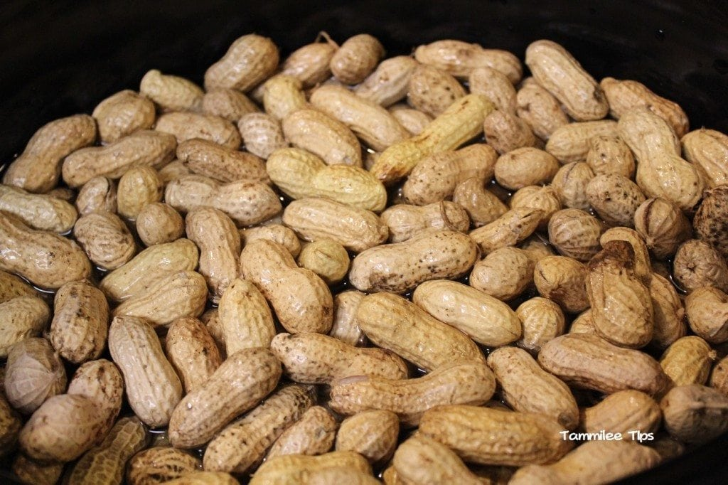 Crock Pot Cajun Boiled Peanuts  Tammilee Tips