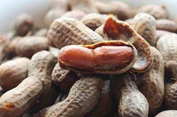 Crock Pot Cajun Boiled Peanuts