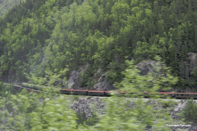 Golden-Princess-Skagway-Drive-to-Yukon.png
