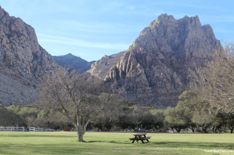 Spring-Mountain-Ranch-State-Park-Picnic-Area.png