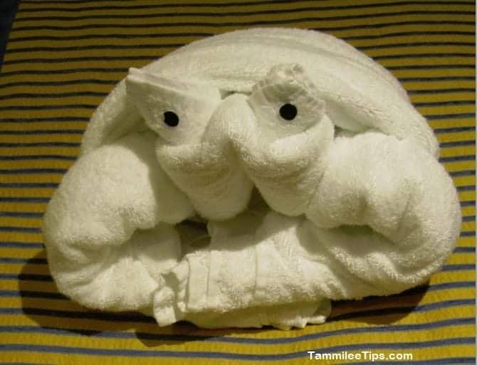 Carnival Breeze Towel Animal Frog