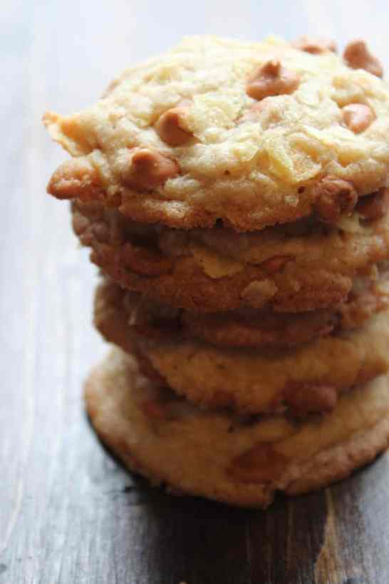 potato Chip Cookies Recipe Tammilee Tips