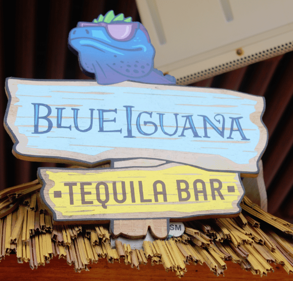 Blue Iguana Tequila Bar 4