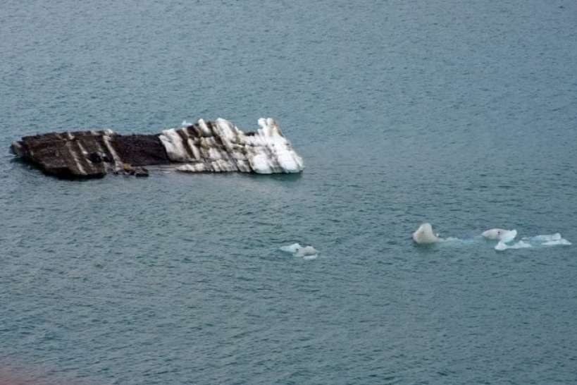 polar-bear-iceberg.jpg