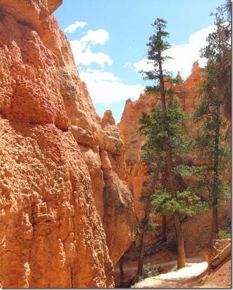 Hiking at Bryce Canyon