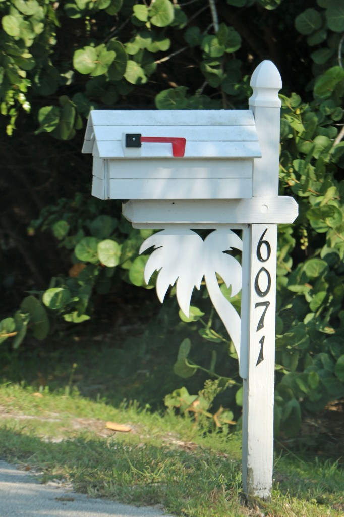 Palm Tree Mailbox Sanibel
