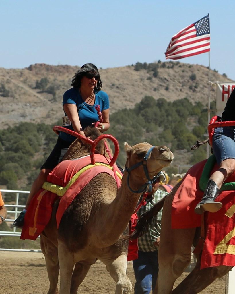 Camel Racing in Virginia City
