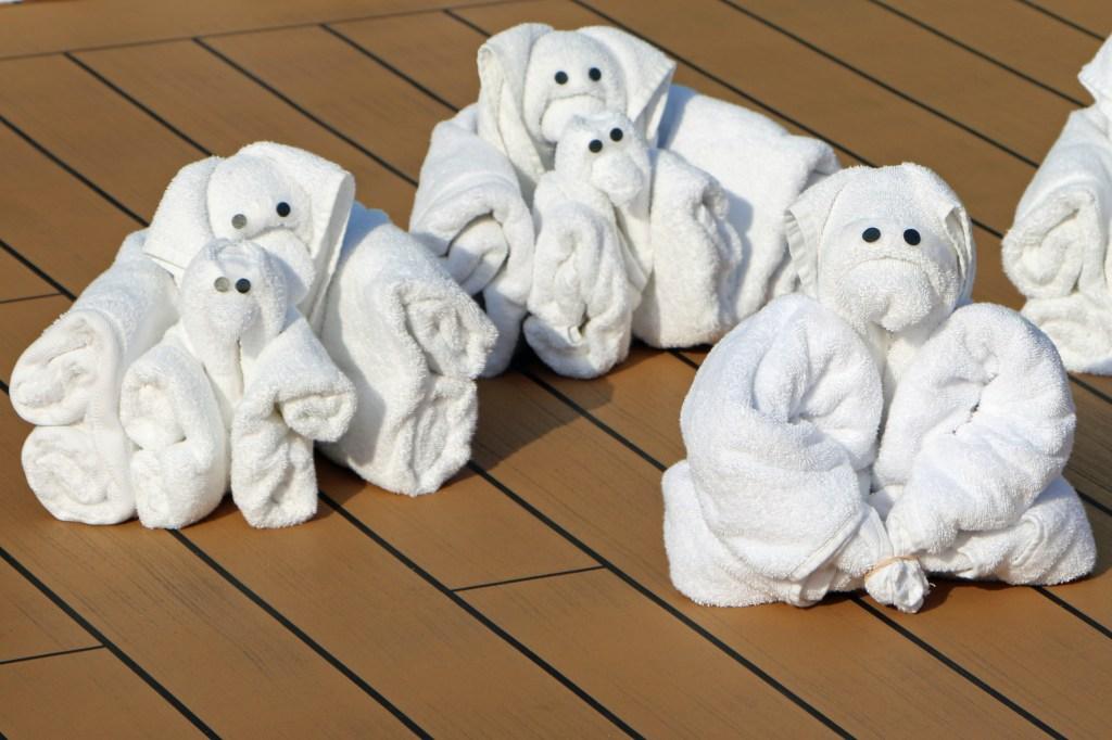 towel zoo