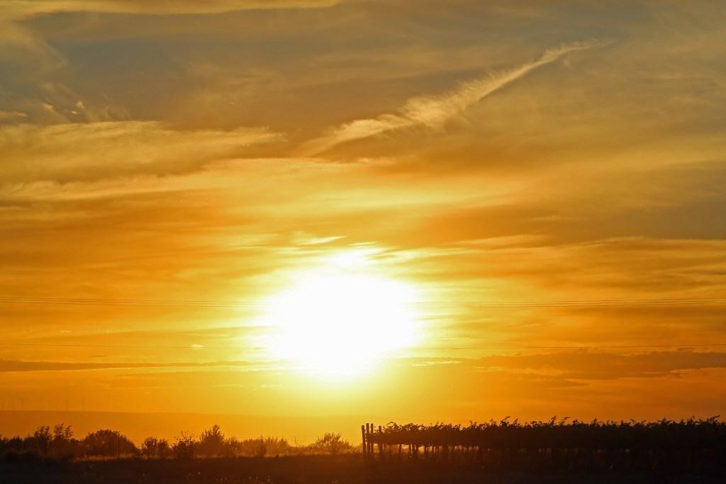 Stunning Sunset over Amavi Vineyard Walla Walla Washington