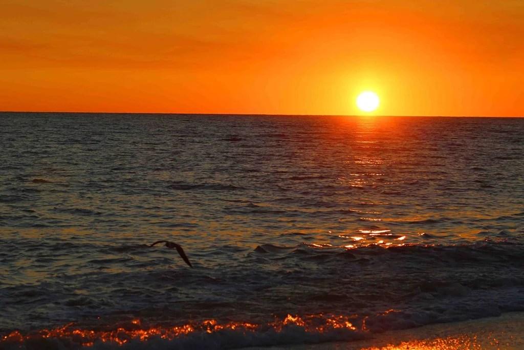 Blog-Sunset-in-Sanibel-Island-Florida.jpg