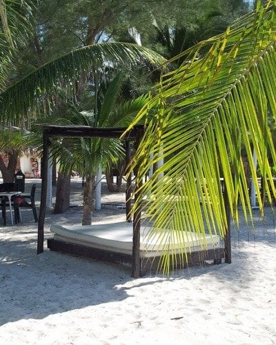 outdoor-bed-on-Passion-Island.jpg