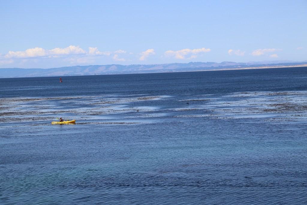 Cannery Row Kayaking