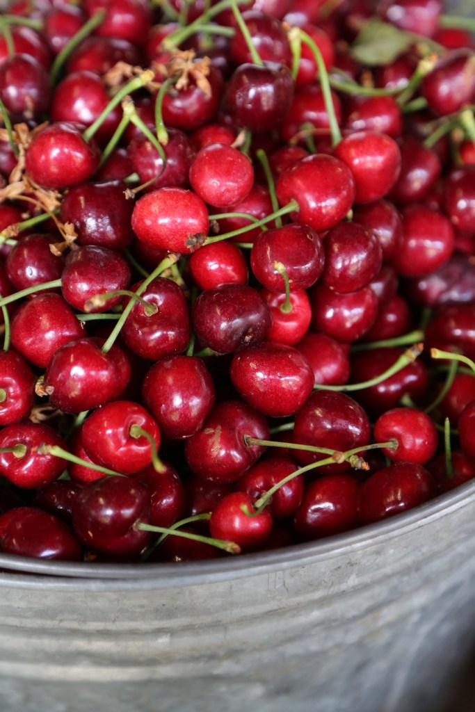 Fresh Cherries at Draper Girl Farms